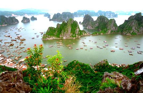 Vẻ đẹp quang cảnh vịnh Hạ Long nhìn từ núi Bài Thơ