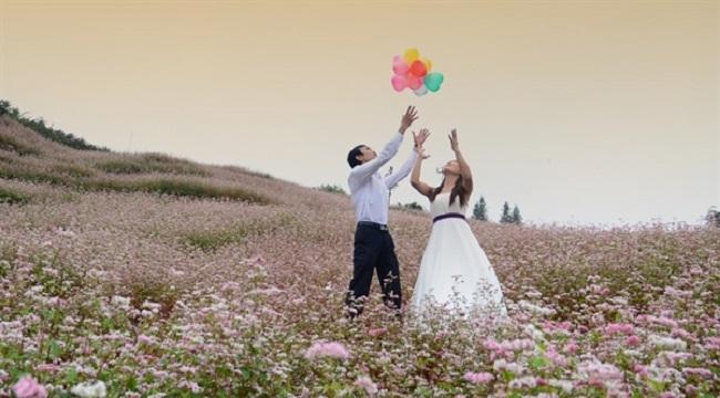 Ảnh cưới ở cánh đồng hoa tam giác mạch