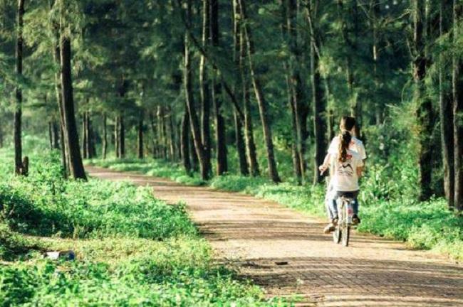Lang thang trên con đường tình yêu